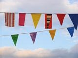 Bunting by Jane Watson, Photography