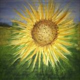 Sunflower by Jane Watson, Painting, Acrylic on board